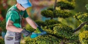 Landscaping Liability Insurance
