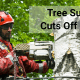 tree services insurance